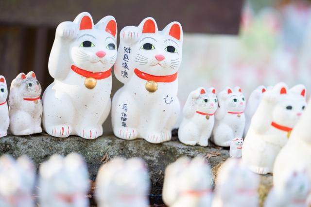 f:id:gaoyang:20181220140116j:image