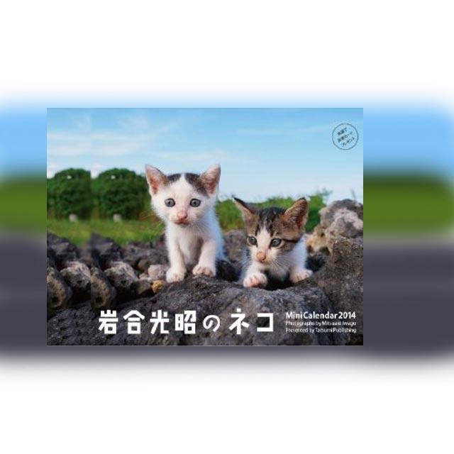 岩合光昭 世界ネコ歩き