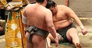 立ち合いで頭から激突し崩れ落ちる…協議後取り直し - 大相撲 : 日刊スポーツ