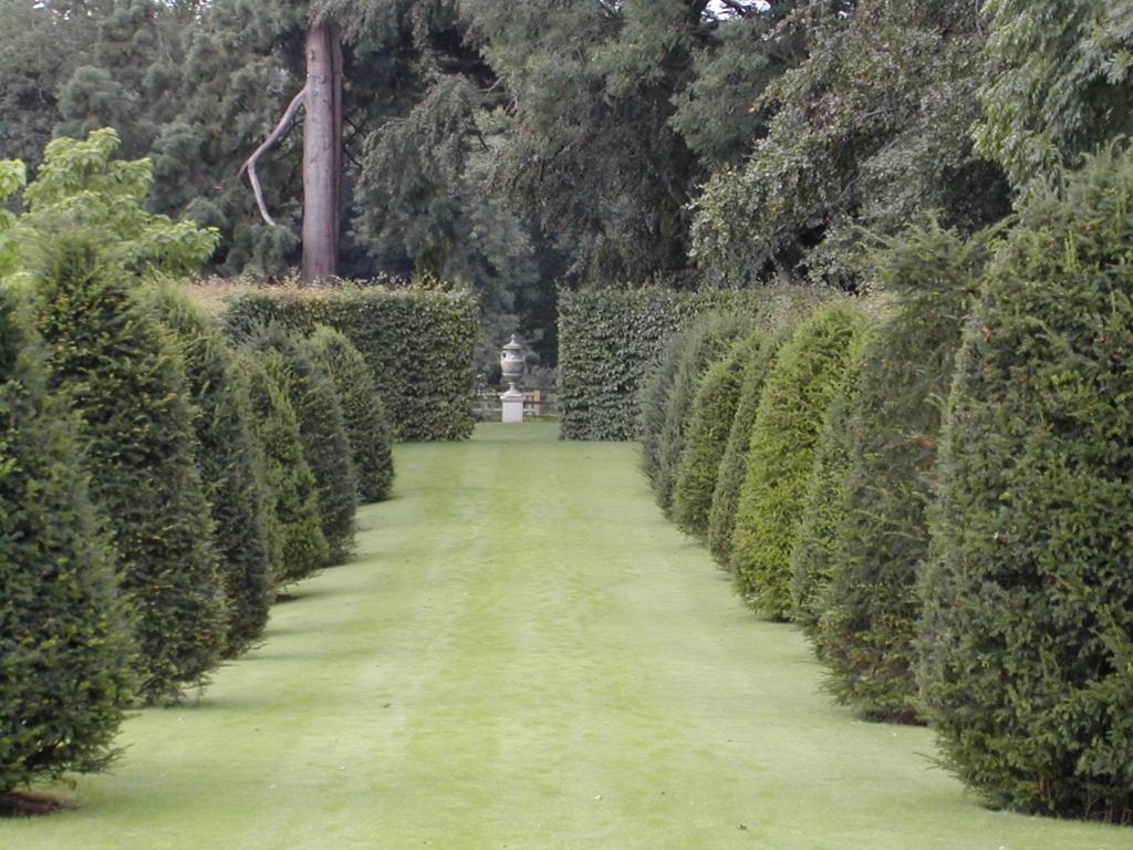 f:id:gardenforhsp:20171122165026j:plain