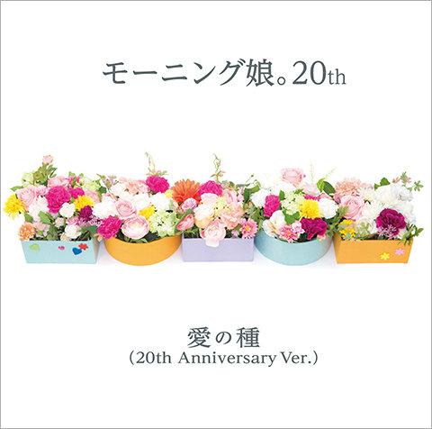 f:id:gardenshin:20171102125114j:plain