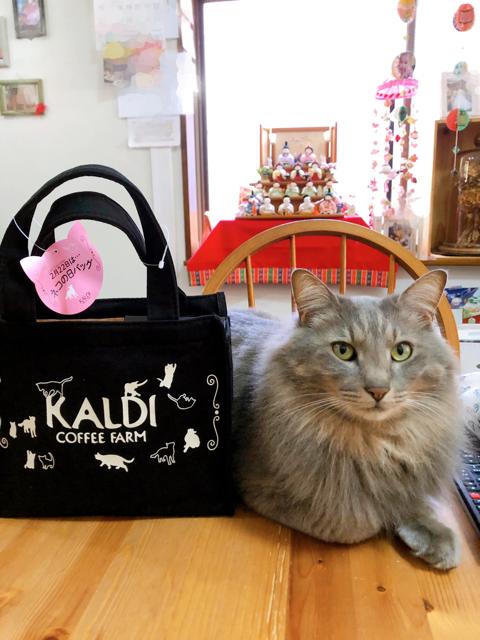 猫 日 カルディ バッグ 2020 の カルディ猫の日バッグ2021並ぶ時間は?売り切れや歴代についてもまとめてみました