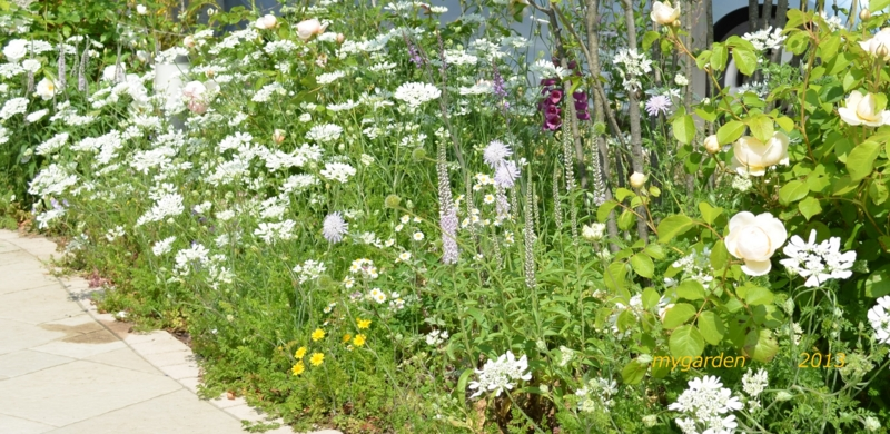 f:id:gardentime:20170515174022j:plain