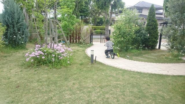 f:id:gardentime:20170516002346j:plain
