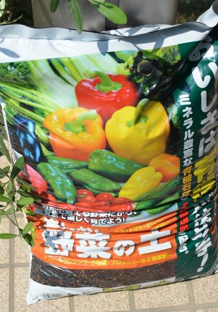 f:id:gardentime:20170605194549j:plain