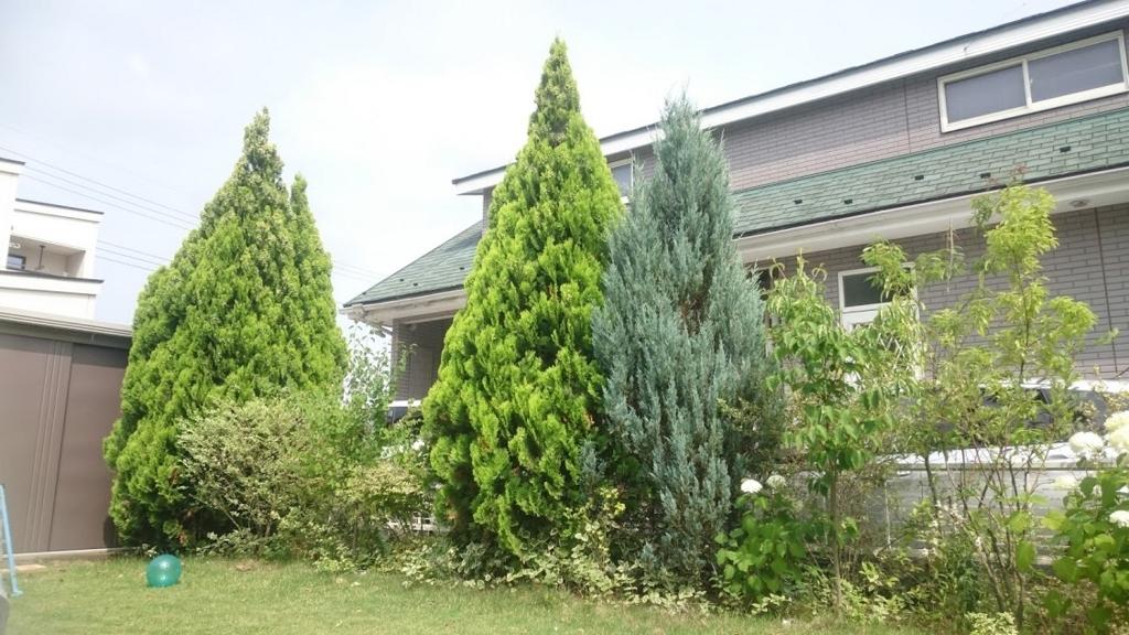 f:id:gardentime:20170707112751j:plain