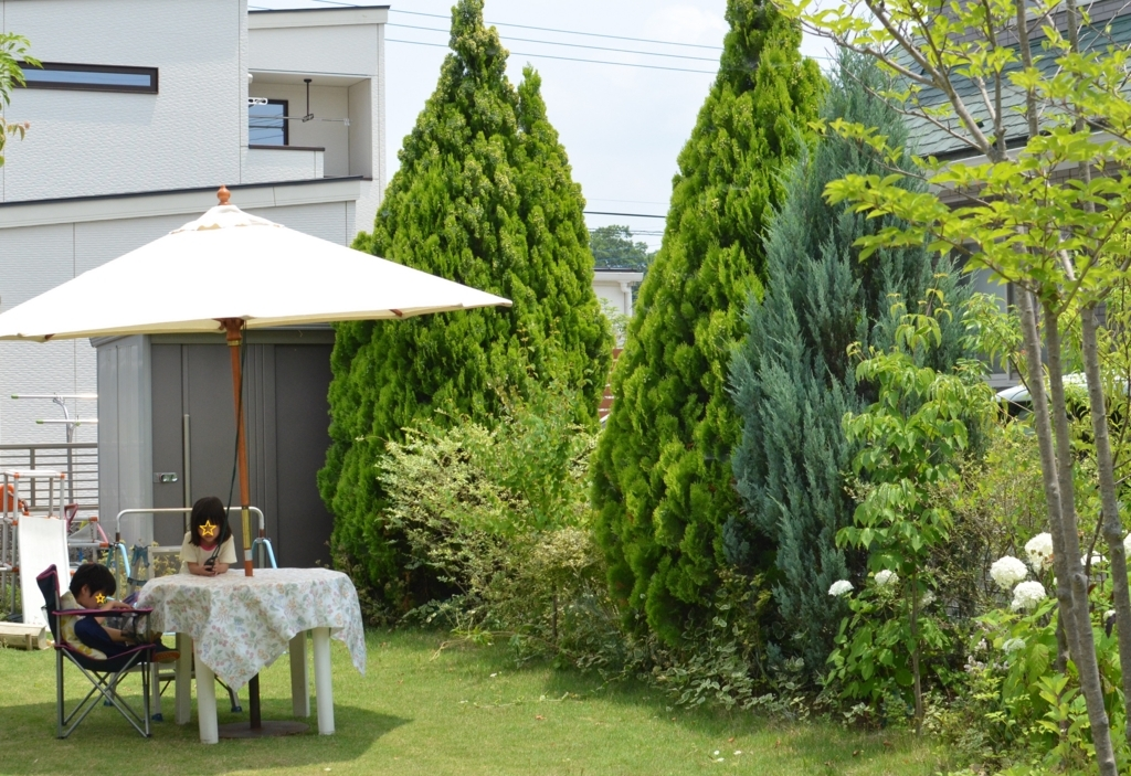f:id:gardentime:20170707174936j:plain