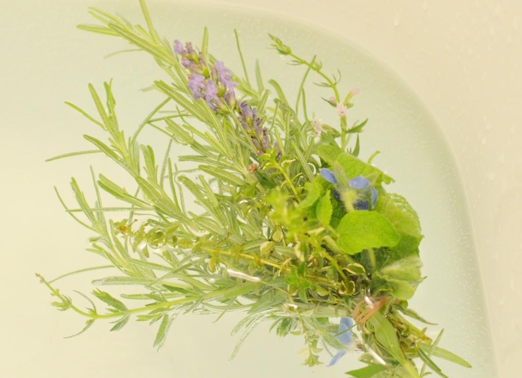 f:id:gardentime:20170713201028j:plain