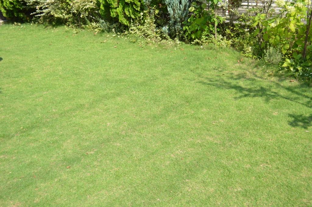 f:id:gardentime:20170814201203j:plain