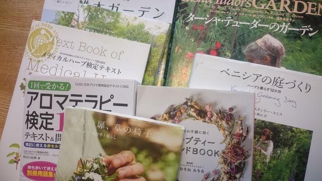 f:id:gardentime:20170817132652j:plain