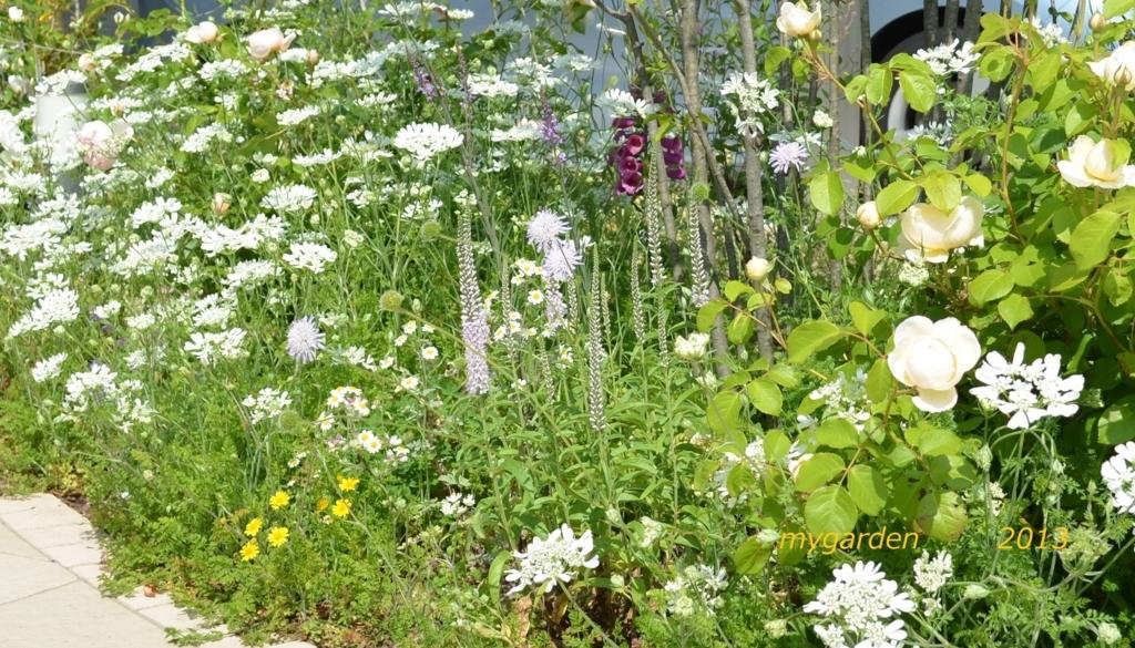 f:id:gardentime:20171204014128j:plain