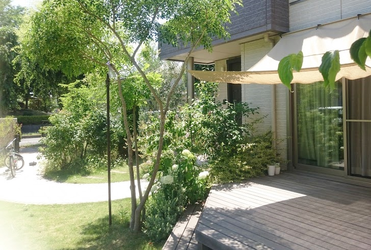 f:id:gardentime:20171205230939j:plain
