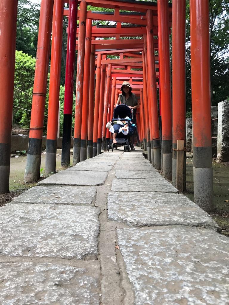 f:id:garichichi:20180815205227j:image