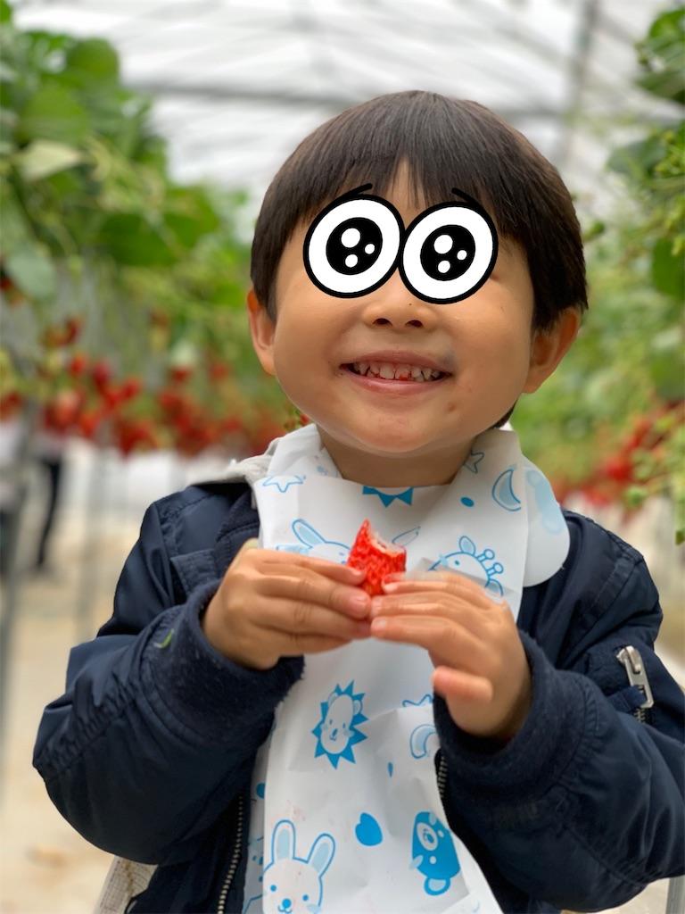 f:id:garichichi:20190326161708j:image