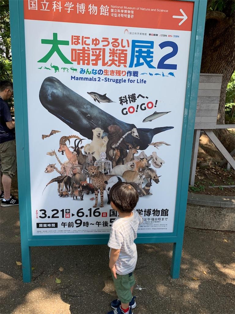 f:id:garichichi:20190526221157j:image