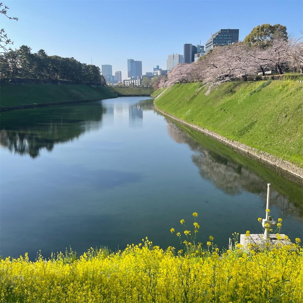 f:id:garichichi:20210324161301j:image