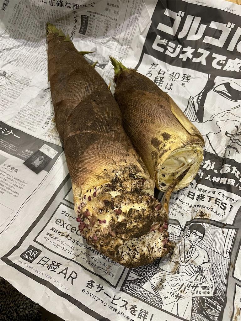 f:id:garichichi:20210417094313j:image