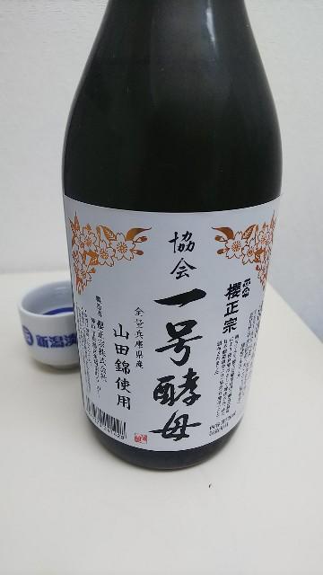 f:id:gatao_healing:20210502112927j:image