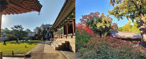 徳寿宮内部庭園