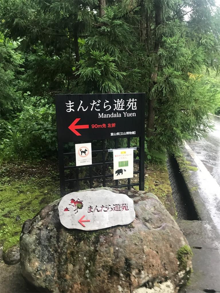 f:id:gatomoshi:20190715104119j:image