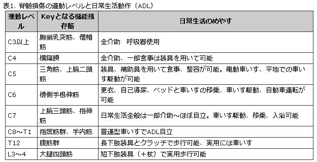 f:id:gazo-u:20190518185558p:plain