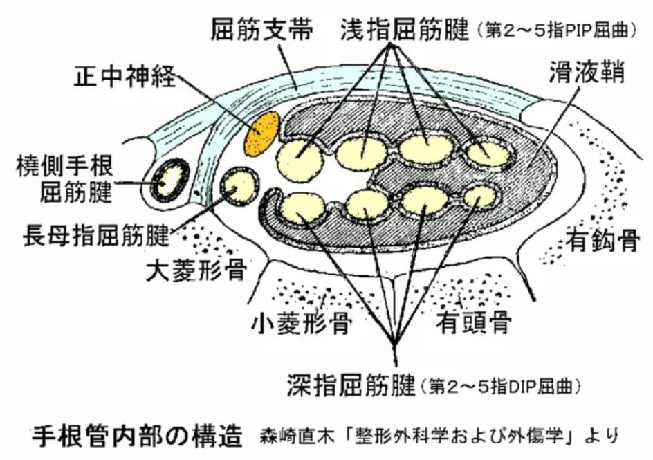 f:id:gazo-u:20200115153157p:plain