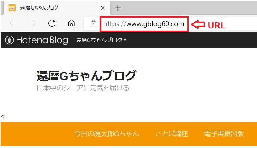 f:id:gblog60:20210208143825j:plain