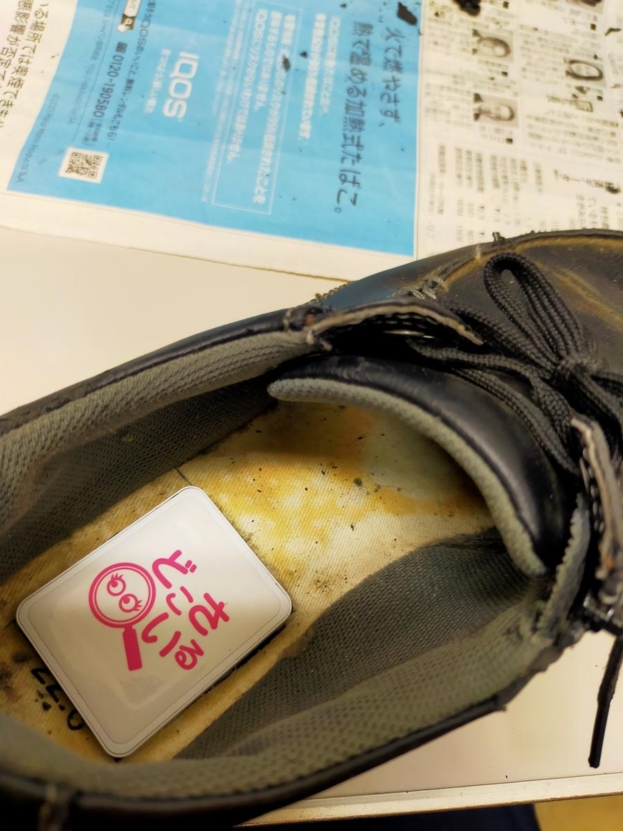 f:id:gc-funabashi-miyama:20210304154305j:plain