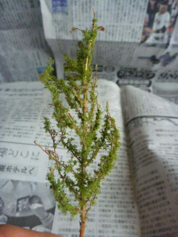 f:id:gc8hiro:20110517133016j:image