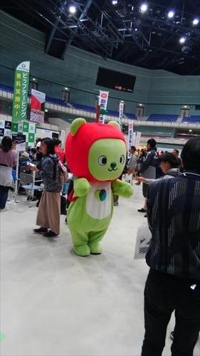 f:id:gchanchan:20190422213604j:plain