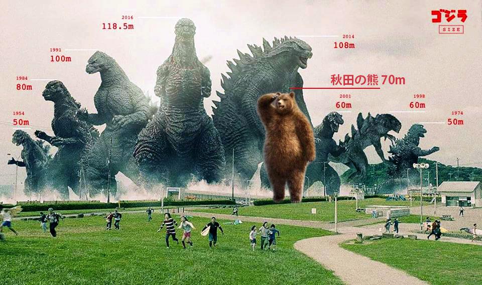 秋田のクマがデカすぎる
