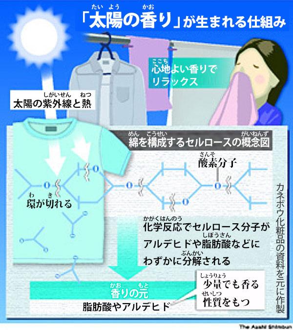 おひさまの匂い(太陽の香り)が生まれる仕組み