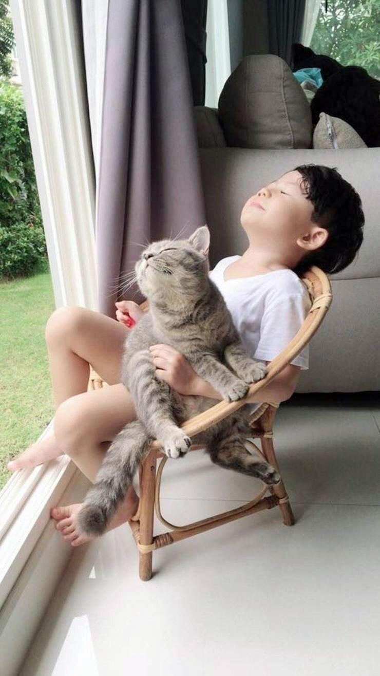 猫と子供の至福のひととき