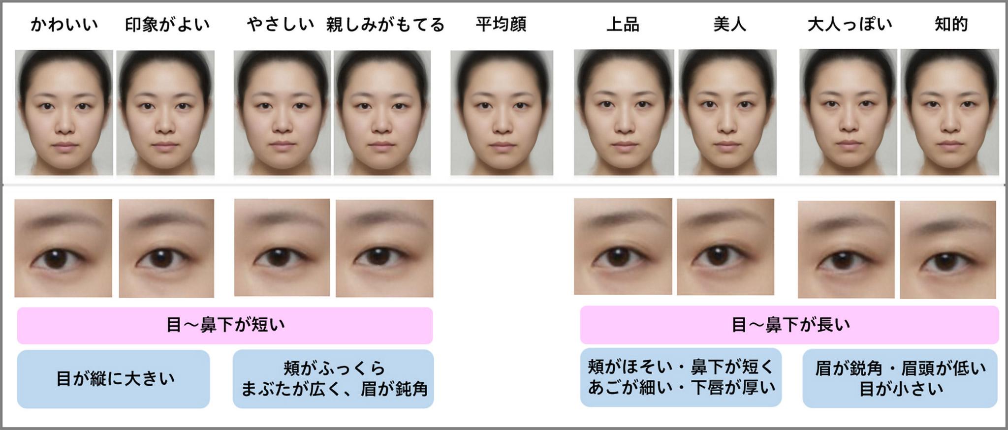日本人女性の「平均顔」と印象による顔の特徴