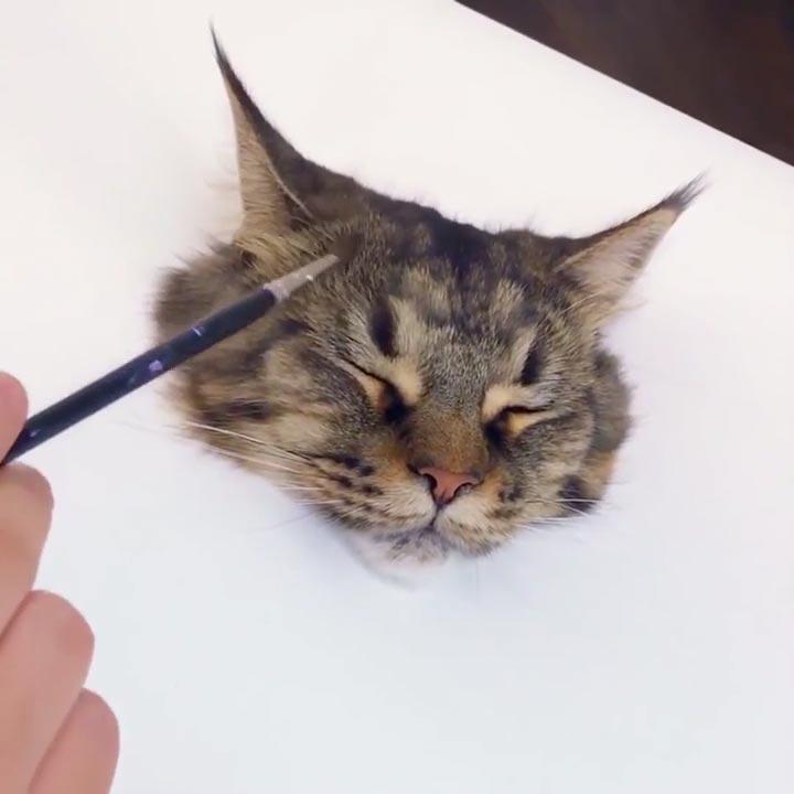 リアルな猫の絵を描く