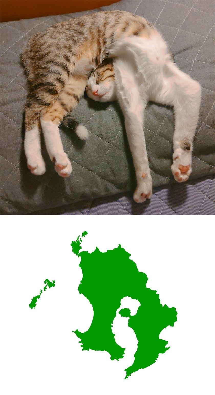 鹿児島になって寝るな