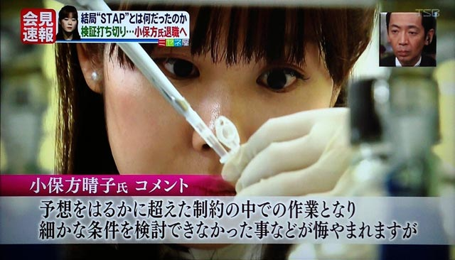 STAP細胞再現できず。理研が会見143327