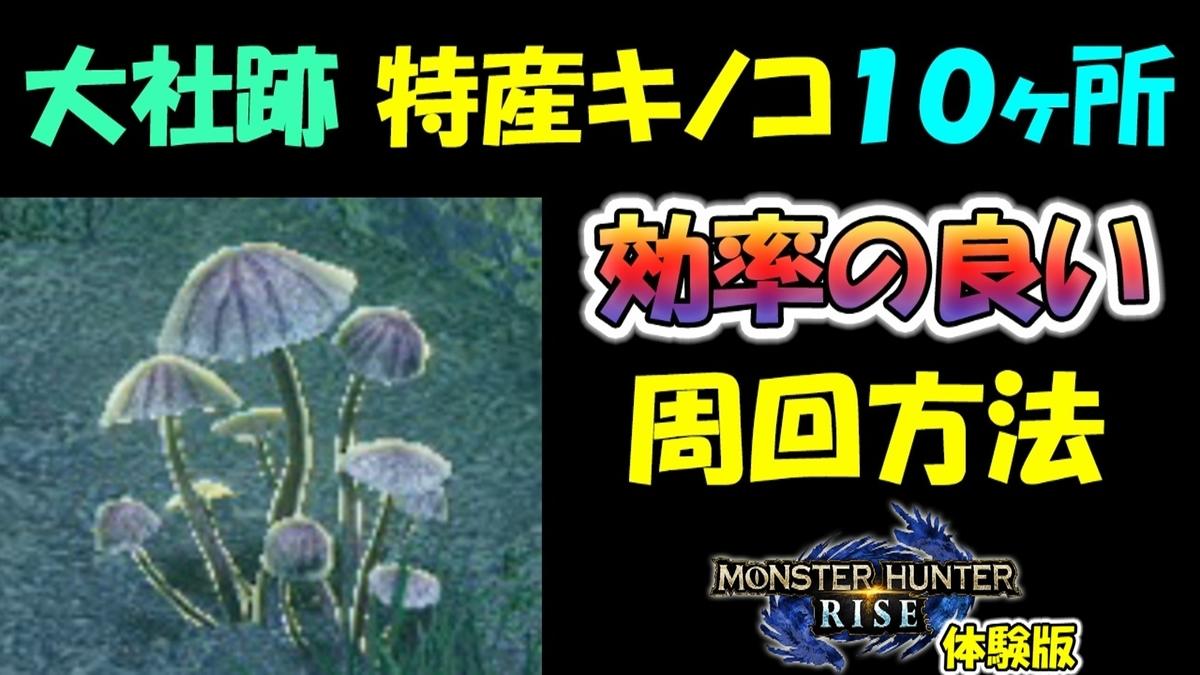 f:id:geimubouimakoto:20210112145634j:plain