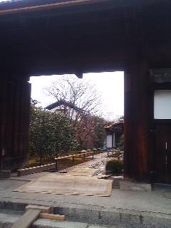 此れ何処の庭だっけ?←大徳寺の中の興臨院