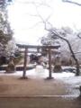 行く途中の神社的なとこ。寒々しいけど綺麗