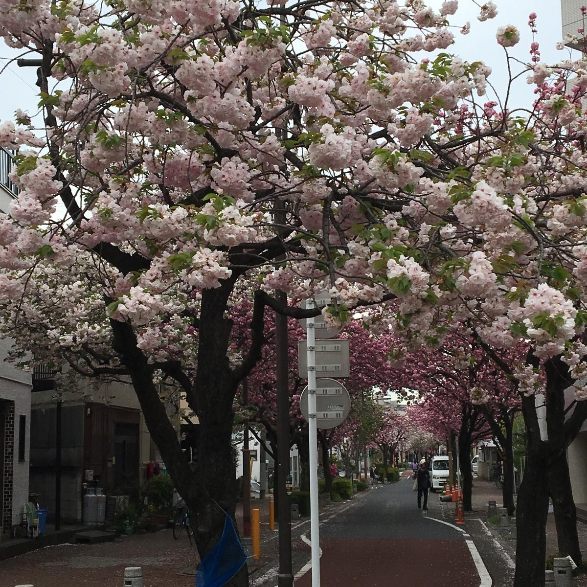f:id:gekidan1:20170418154535j:plain