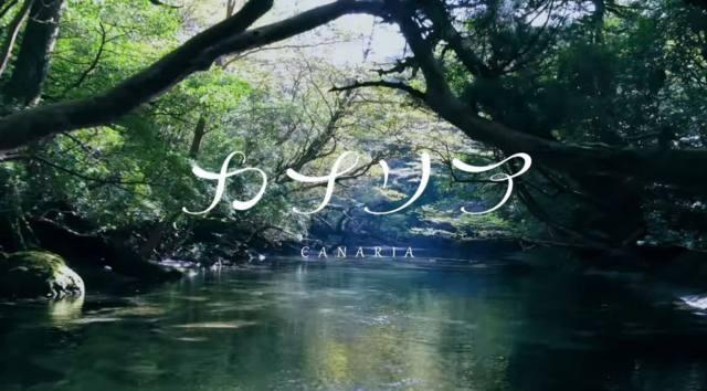 屋久島は島全体が世界遺産である