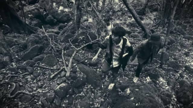 ヤクスギランドは撮影に使われた