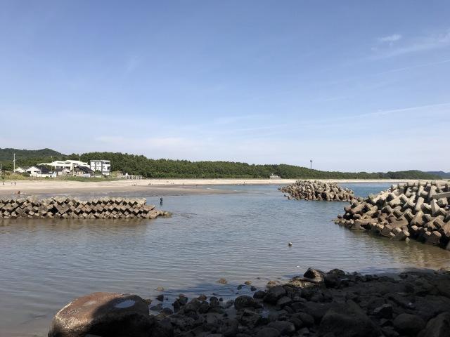 照島海岸が広がっています