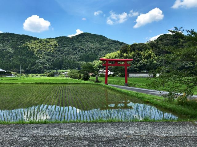 「花尾神社」の鳥居をくぐると『癒し茶屋 杜の風』に到着です!