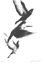f:id:gemini-yahata:20180406141736j:plain