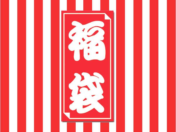 f:id:gemini-yahata:20190101202438j:plain