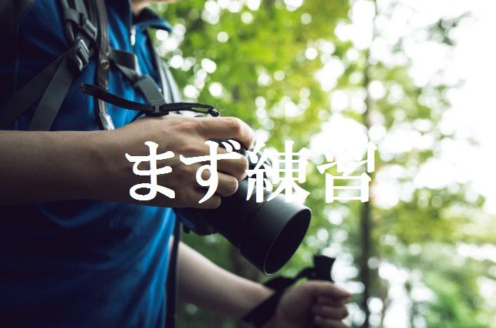 f:id:gemini-yahata:20190418100137j:plain