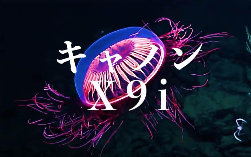 f:id:gemini-yahata:20190419101707j:plain