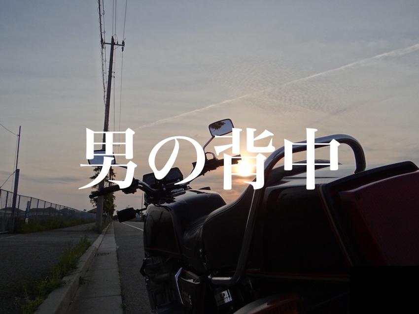 f:id:gemini-yahata:20190513232730j:plain
